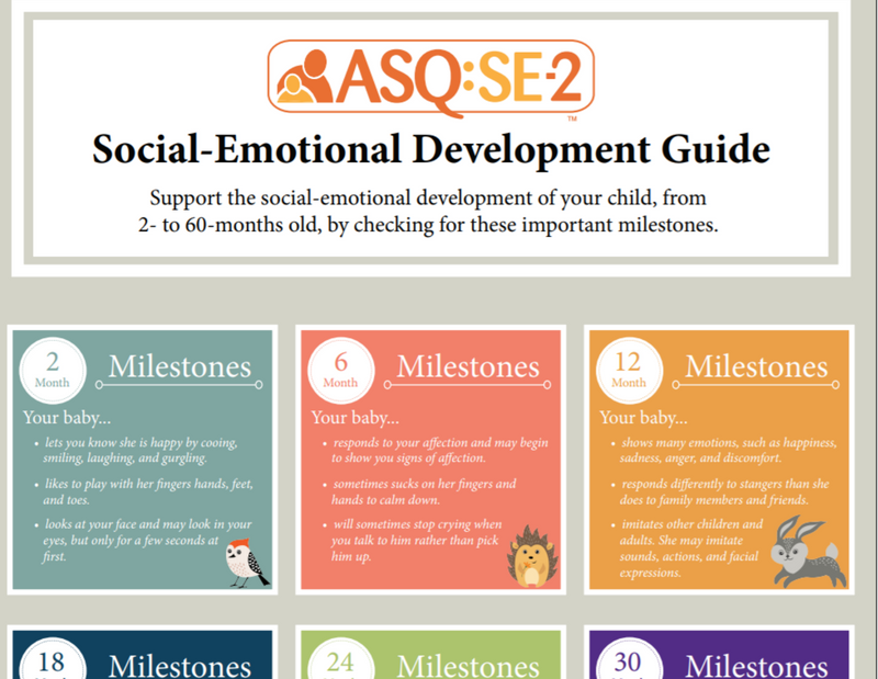 The 7 Behavioral Areas of ASQ:SE-2